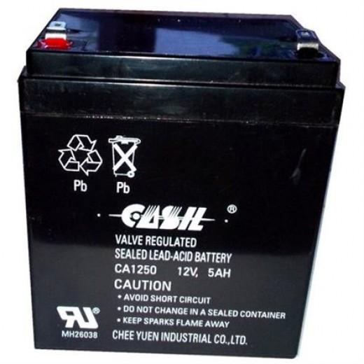 Casil CA1250